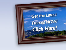 frame, digital photo, desktop, software